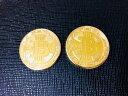 2枚セット 新モデル ビットコイン ゴールド 金 仮想通貨  プラスチックケース付き