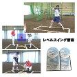 ソフトボール・レベルスイング習得プログラム2枚組DVD