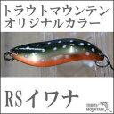 アングラーズシステムBUX(バックス)3.8g【RSイワナ】【オリカラ】