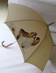 キャバリア柄のワンタッチ雨傘です[トラストワンポイント]