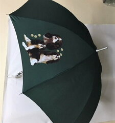 キャバリア柄のワンタッチ傘です(NEW集合)[トラストワンポイント]