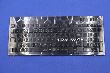 NEC (LaVie G タイプS) GN255S/S2 PC-GN255SSA2 PC-GN255SSD2 PC-GN255SSG2 PC-GN255SSL2 日本語キーボード