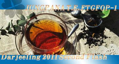 ジャンパナ茶園。しっかり揉まれたかたい茶葉。豊かで柔らかいマスカテルフレーバーと円熟した...