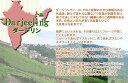 インド紅茶:2020年ダージリンオータムナル秋摘タルボ茶園 DJ626 FTGFOP1-CL-TIPPY(50g)【メール便:送料無料】 2
