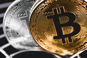 【メール便送料無料(カード振込決済限定)】ビットコインbitcoin・チップタイプマーカー金&銀・2枚セット