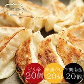 <冷凍>つばめ餃子60個3種食べ比べ(各20個)