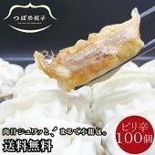 <冷凍>つばめ餃子(ピリ辛みそ味)100個箱入