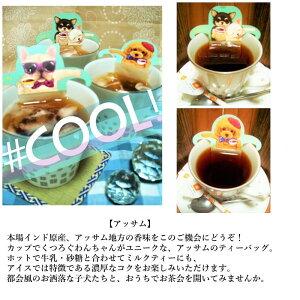 紅茶ギフトおしゃれティーバッグかわいい選べるアールグレイルイボスティーメープルティーアップルティー1種類×2袋セット猫グッズ猫雑貨ネコグッズネコ雑貨紅茶ねこ猫ネコ