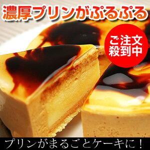 【プリンケーキ】TVやメディアで大絶賛プリンがそのまんまケーキになっちゃった!【…