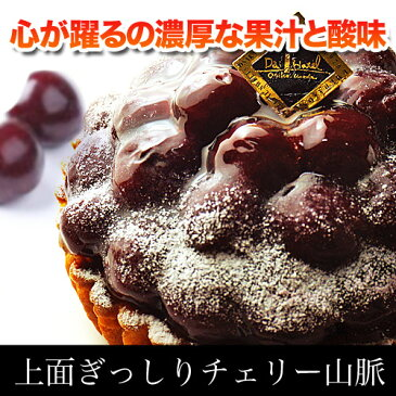 大阪第一ホテル 踊り子のチェリータルト アメリカンチェリー さくらんぼ タルト