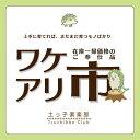 【訳あり・在庫処分】カリン(花梨) 21cmポット大苗