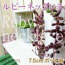 多肉植物 『ルビーネックレス』 7.5cmポット苗