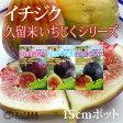 【選べる品種】久留米いちじくシリーズ 12cmポット苗