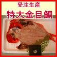 受注生産【釣り漁】金目鯛