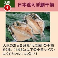 えぼ鯛干物2枚