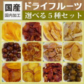 国産ドライフルーツ選べる5種セット