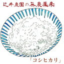 令和2年産 無農薬有機栽培米「コシヒカリ」 10kg 送料無料