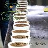 カップオブエクセレンススペシャルティコーヒー豆エルサルバドルパカマラ200gロス・ピリニョス農園ハニープロセス