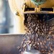 スペシャルティコーヒー豆ボリビア プマプンク農園200gティピカ フルウォッシュドスペシャルティコーヒー バイオラティーナ有機認証