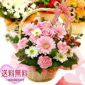 送料無料 【可愛いリボンが付いたボリュームいっぱい フラワーアレンジメント ティアラ】花 誕生日 ギフト プレゼント アレンジメントフラワー