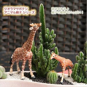 サボテン 動物【モダンスタイルF-7 ジオラマサボテンシリーズ アニマル親子(電磁波吸収サボテ…