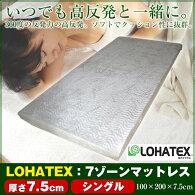 ロハテックス7ゾーン敷きマット