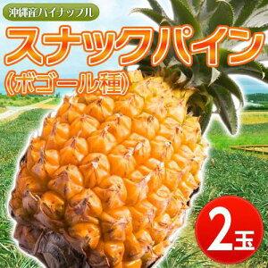 手でちぎれる高糖度パイン!沖縄産「スナックパイン」2玉(1玉約600g) frt