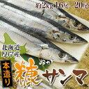 北海道 厚岸産『糠サンマ』 約2kg 16〜20尾入り 冷凍 sea ☆
