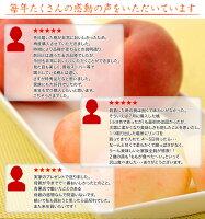 《送料無料》福島県産「伊達の桃」特秀品約1.5kg×2箱(1箱:5〜10玉)frt☆
