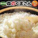 お米 5kg 熊本県産『森のくまさん』白米5kg おこめ 米...
