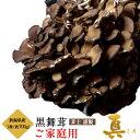 まいたけ 新潟県産 黒舞茸『真』 ご家庭用 約700g マイタケ 舞茸 訳あり きのこ 国産 野菜 お取り寄せ 通販 冷蔵