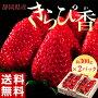 《送料無料》静岡産「きらぴ香いちご」約300g×2P(等級:グランデ又はデラックス)※冷蔵frt☆
