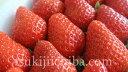 いちご イチゴ 苺 徳島県佐那河内 さくらももいちご Mサイズ 約220g×2パック 冷蔵 送料無料