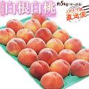 桃 もも モモ 山形県産 白根白桃 約5kg(10〜20玉) 送料無料