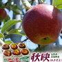 《送料無料》長野県安曇野産「秋映りんご」約1.7キロ(5〜7玉)frt○