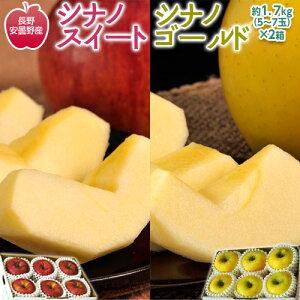 りんご リンゴ 林檎 長野県 安曇野産 シナノスイート & シナノゴールド (各1箱 5〜7玉入 約1.7kg)送料無料