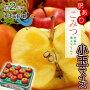【究極の蜜入りりんご】青森産『こみつ』1箱(8〜14玉)約2キロ