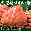 カナダ産 大型姿ずわい蟹 約600g ※冷凍 sea ☆ ズワイ・ズワイガニ(手作り「キムチ」専門店)はコチラ