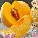 もも モモ 桃 黄桃 福島県産 伊達の黄桃 約1.5kg(5〜10玉)送料無料