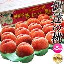 桃 もも 福島県産 伊達の桃 特秀品 15〜25玉 約5kg 送料無料