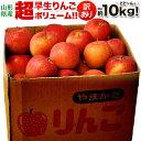 山形産訳あり「早生りんご」バラ詰め 茶箱 (26〜54玉前後) 風袋込み約10kg ※常温 送料無料