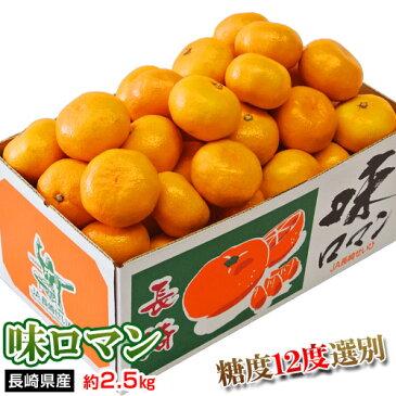みかん 送料無料 長崎県産みかん 味ロマン 約2.5kg (2S〜M) 【糖度12度選別】
