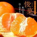 橋爪流栽培みかん 俊菓(しゅんか) 和歌山県産 2S〜Mサイズ 約2.5キロ ※常温 送料無料