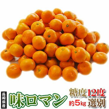 みかん 送料無料 長崎県産みかん 味ロマン 約5kg (2S〜M) 【糖度12度選別】