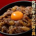 ご飯のお供 送料無料 『牛カルビ丼の具』1食100g×10食