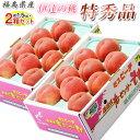 もも モモ 桃 福島県産 伊達の桃 特秀品 約1.5kg×2箱 1箱あたり5〜10玉 送料無料 産地直送