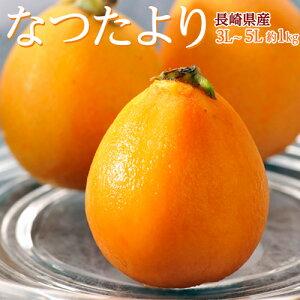 びわ なつたより 長崎県産 秀品 大粒3〜5L 12〜16玉 約1kg ※冷蔵 送料無料