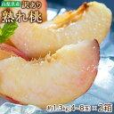 桃 もも 訳あり 山梨県産 春日居共選所の 熟れ桃 約1.3kg×2箱 送料無料 産地直送