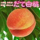 もも 桃 モモ 山形県産 阿部さんの だて白桃 6〜8玉 約2キロ 送料無料 常温 産地直送