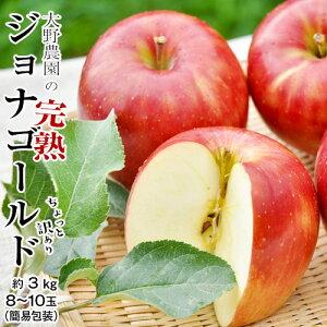 りんご 林檎 リンゴ 訳あり 大野農園のジョナゴールド 福島県石川町産 約3kg 8〜10玉 送料無料 常温 産地直送